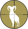Alaska Sheep Hunts by Top Gun Treks