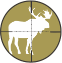 Alaska Moose Hunts by Top Gun Treks