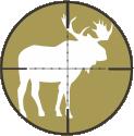 Alaska Moose Hunts by Top Gun Treks