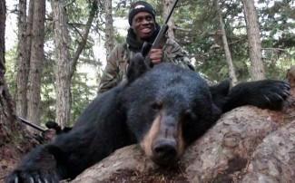 Amazing Alaska Brown Bear Baited Hunts with Top Gun Treks Guide Service